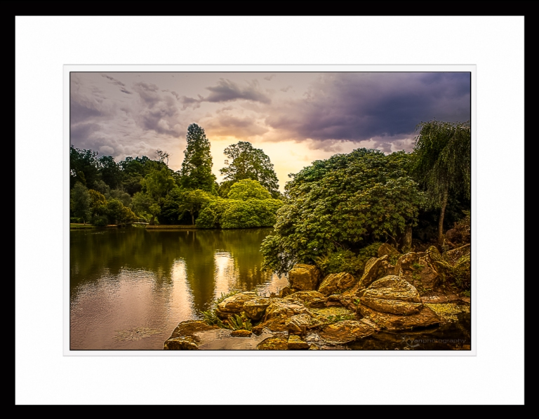 Sheffield Gardens - IMG_2470 - Framed