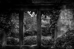 A photograph of one of the old windows at Old Scotney Castle