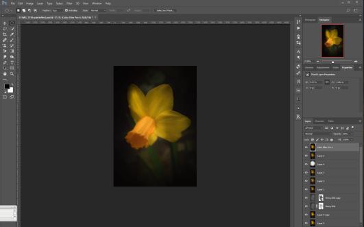 Photoshop Edits - Color Efex Filter