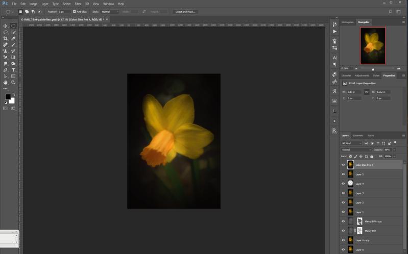 Daffodil after Nik Color Efex