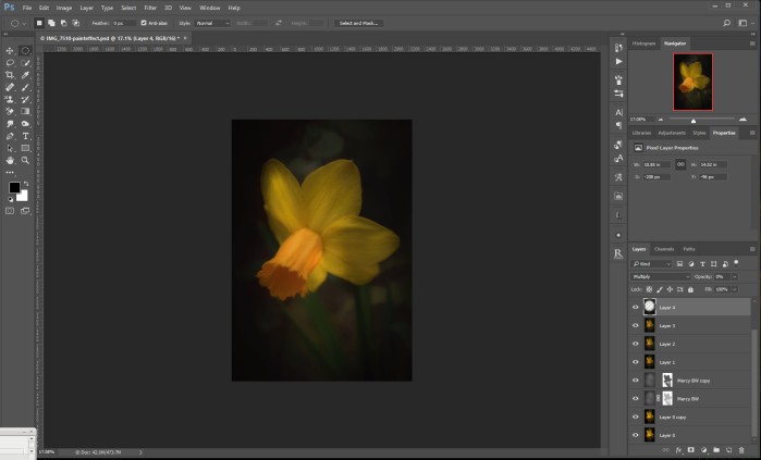 Daffodil after Topaz Impression