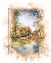 A photograph of Ashenbank Woods created in Photoshop to create water reflection and given Powder Paint Effect.