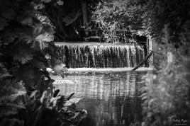 Water Cascade at Batemans House