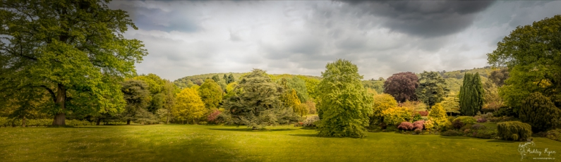 Panoramic of Mount Ephraim Gardens