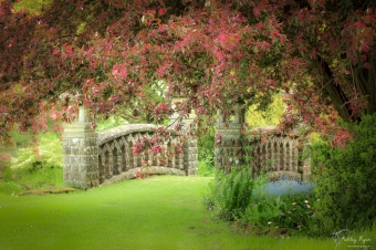 Stone bridge at Mount Ephraim
