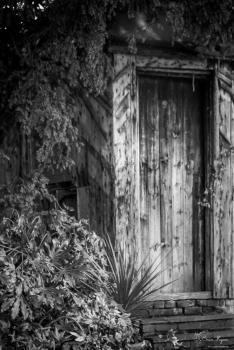 Wooden gate at Mount Ephraim Gardens