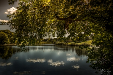 A photograph of one of the lakes at Leeds Castle near Maidstone in Kent.