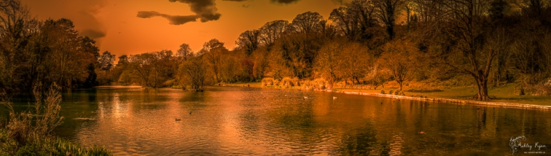 A photograph of the lake at Russell Gardens, near Kearsney in Dover
