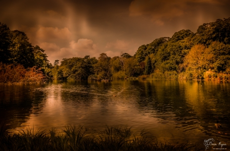 A photography of the lake at Russell Gardens, Kearsney in Kent.