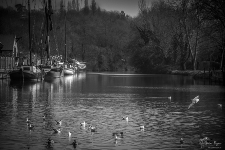 Allington Locks