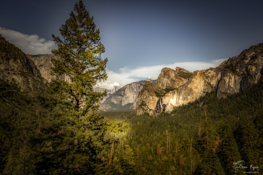 Overlooking Yosemite National Park