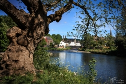 A photograph of the River Derwent at Cockermouth
