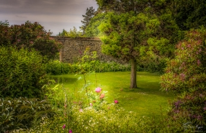 The gardens of Down House