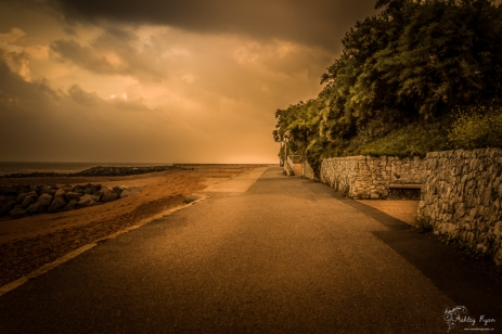 A photograph taken at the Lower Leas Coastal Route, Folkestone, Kent.