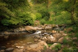 The stream at Aria Force in Cumbria