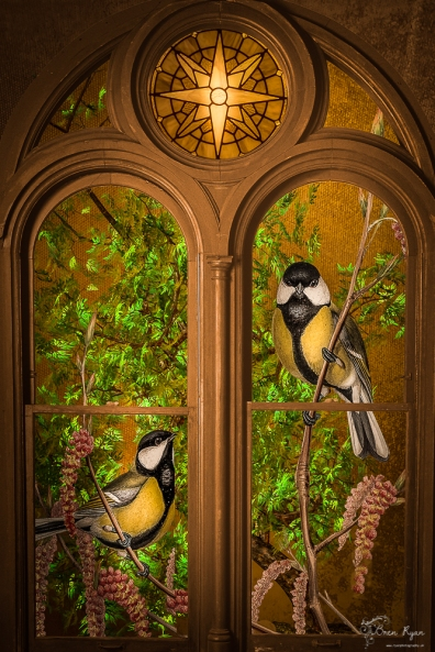 Window Birds