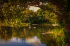 A photograph of the lake at Lullingstone Castle near Eynsford in Kent