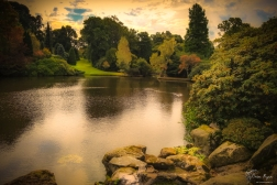 A photograph of the lake at Sheffield Park Gardens in East Sussex.