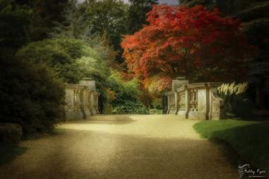 A photograph of the stone balustrade bridge at Sheffield Park Gardens
