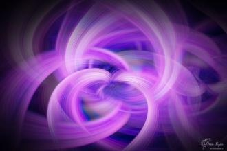 Twirled purple flower