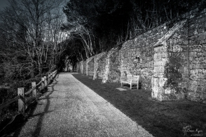 A monochrome photograph of one of the walks at Battle Abbey in East Sussex.