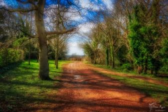 Battle Woodland Walk