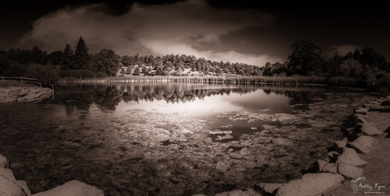 Lake at Bedgebury Pinetum