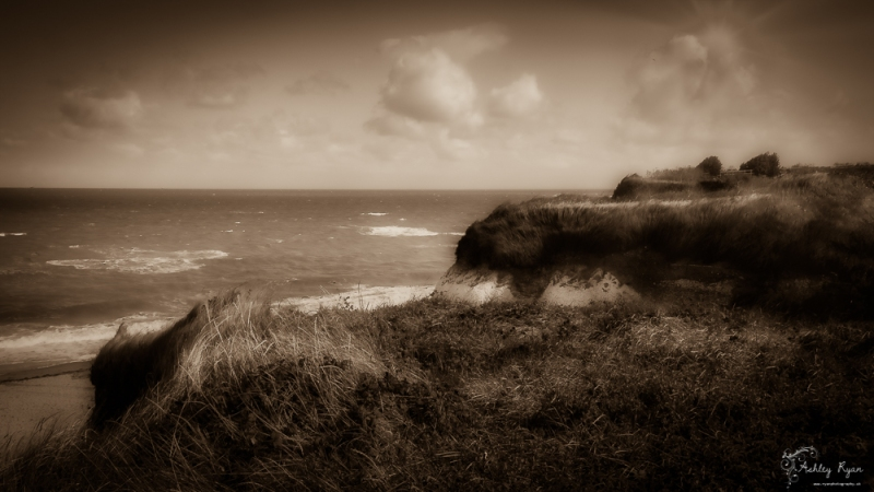 On the cliff tops
