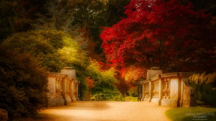 Autumn at Sheffield