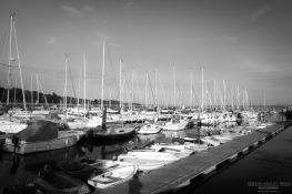 Riverside Marina Boats