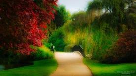 Path of Sheffield