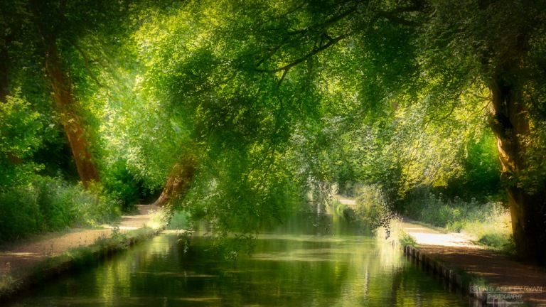 Mottisfont - River Test