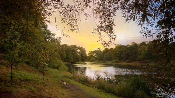 The lake at Nostell