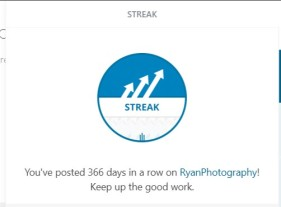 366 posts