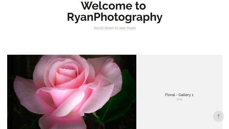 Portfolio Adobe