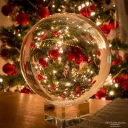A photograph of our Christmas Treet through a Crystall Ball.