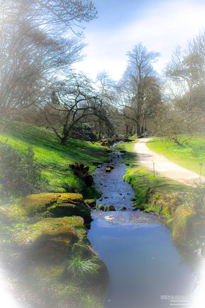 Wakehurst Place Stream
