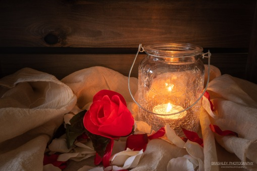 Candle lit rose petals