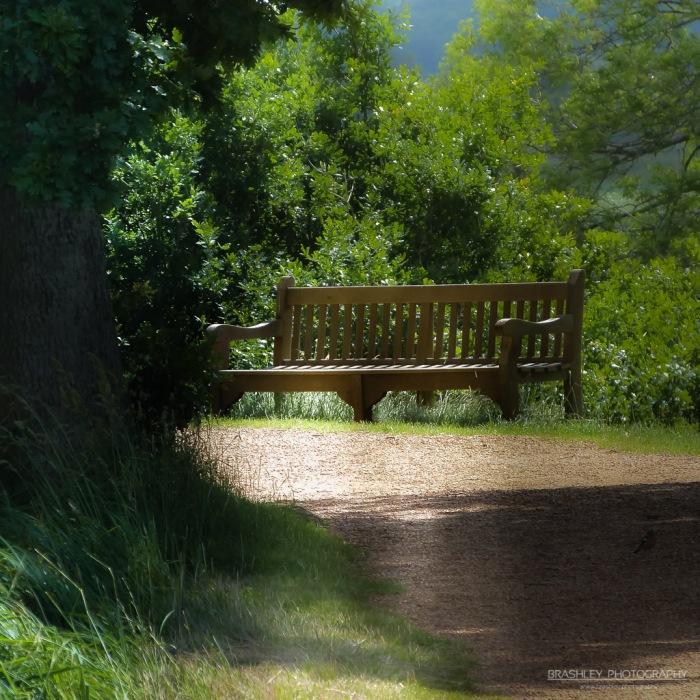 Bodiam Castle Bench