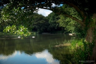 A photograph of the lake at Lullingstone Castle in Kent.