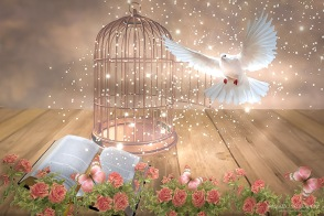 Dove and Book,