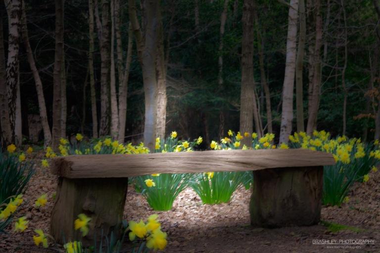 Emmetts Garden Bench