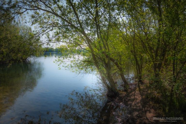 Leybourne Lakes