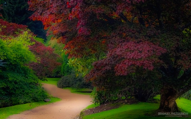 Sheffield Park Path