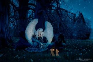 Sleeing Angel