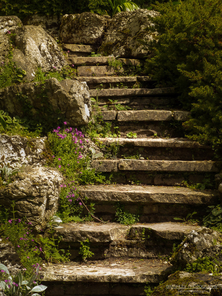 Steps at Polesden