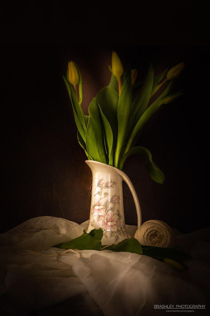 Vased Tulips