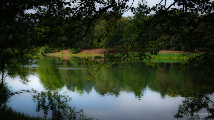 Nostell Lakes