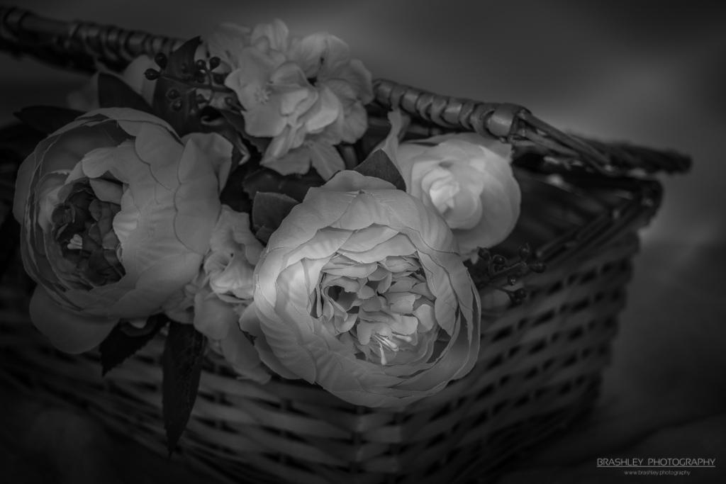 Mid-Week Monochrome #73 – Basket of Flowers